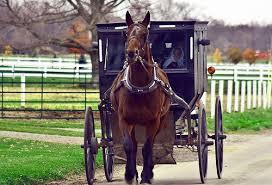 AmishV2